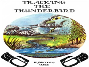 Tracking The Thunderbird